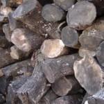 La madera de Olivo se estaciona varios años antes de convertirla en botones.