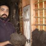 Con la mezcla de barro y paja pronta, Luciano Davyt reviste las paredes que tienen un revestimiento de madera y un tejido hecho con cañas.