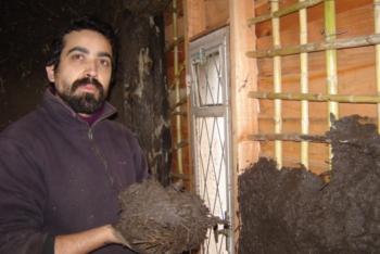 Casas De Barro Autoconstrucción Sustentable Producción
