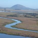 Laguna del Sauce y sus afluentes. En el fondo el cerro Pan de Azúcar
