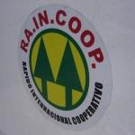 Rápido Internacional Cooperativo (RAINCOOP). Al crear la compañía, los fundadores compraron un estatuto que ya existía para la creación de una compañía de carga internacional.