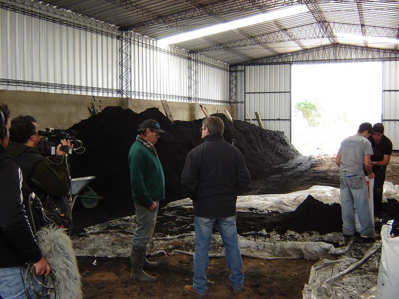 Montevideo rural 79 vivero fachin producci n nacional for Viveros en uruguay