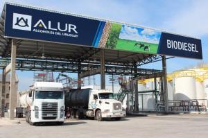 La nueva planta de biodiesel en Capurro. Es de última generación y no produce efluentes.